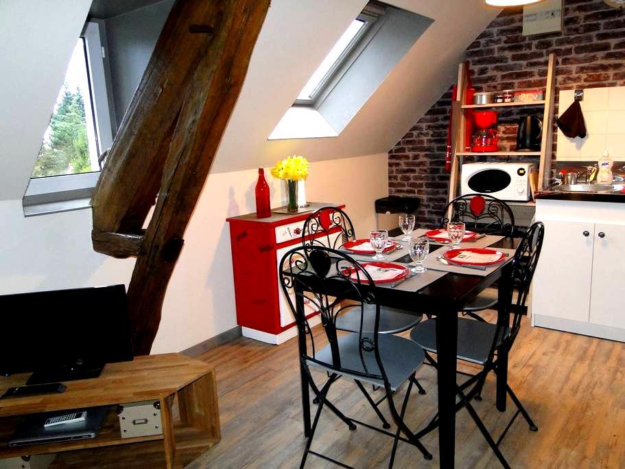 Au coeur des châteaux de la Loire - Chémery - Apartament