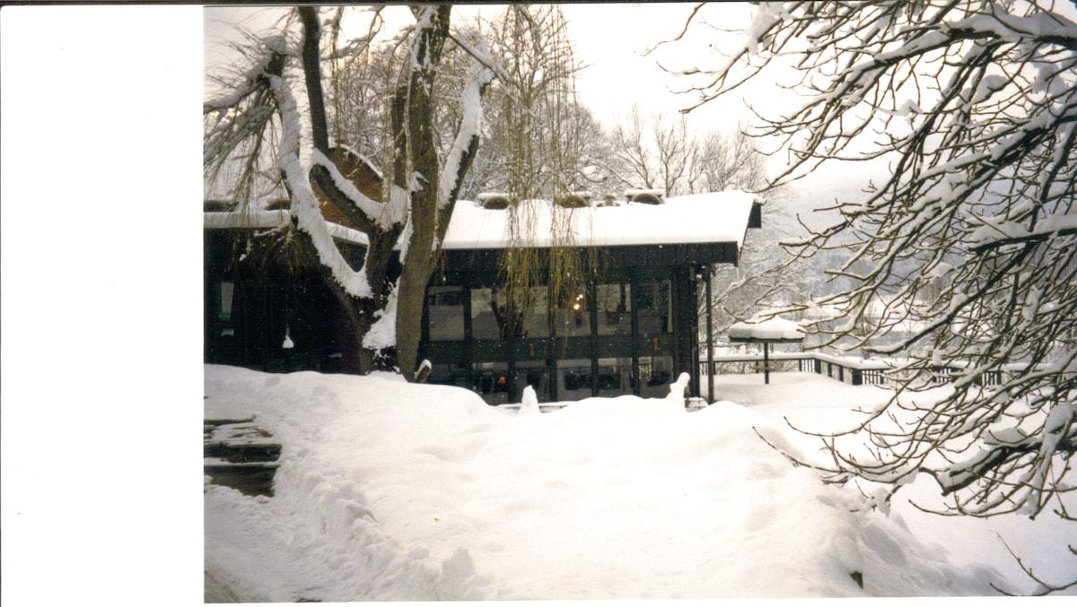 Luxury Home in downtown Revelstoke