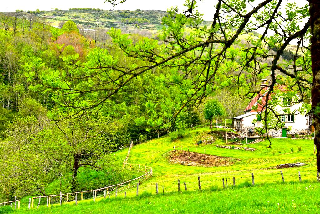 The Cottage at Levert - Saint-Projet-de-Salers