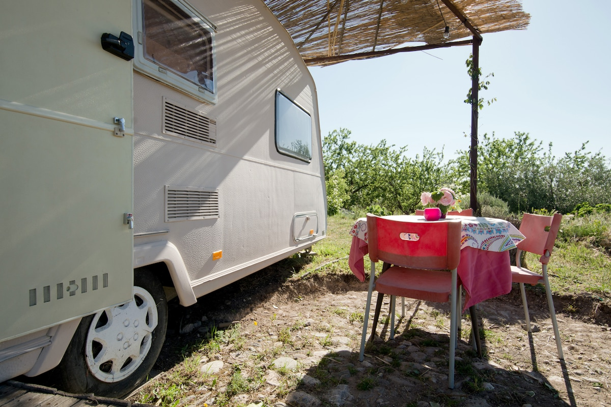 A Caravan in the Montain
