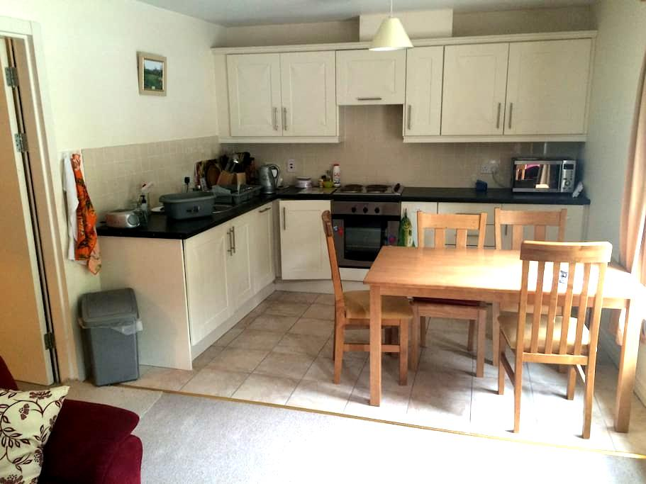 Comfortable fully furnished 2 bed roomed flat. - Fermoy - Apartment