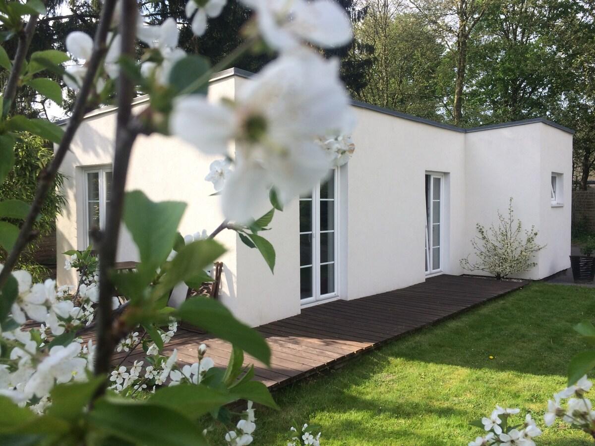 Cute little 'studio' house