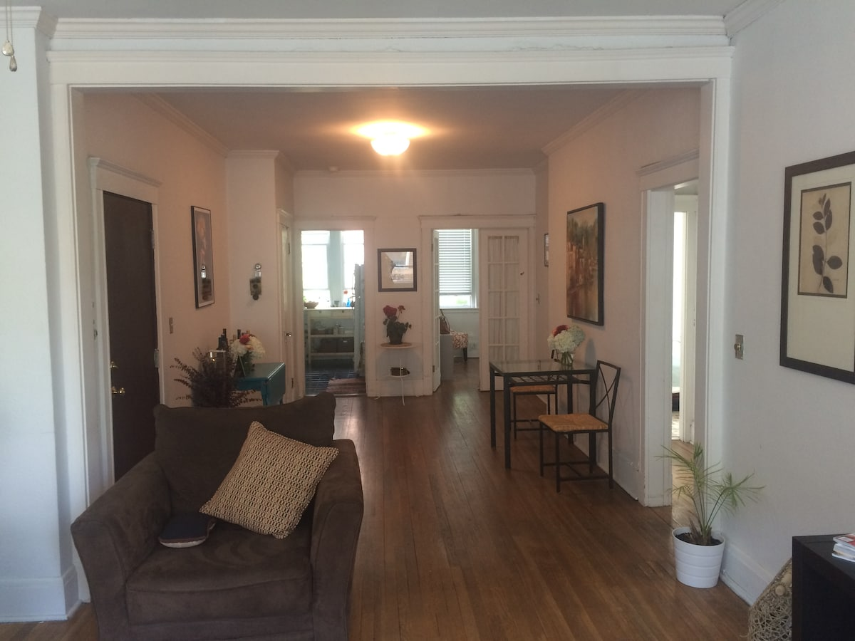 Spacious Coolidge Corner Apartment