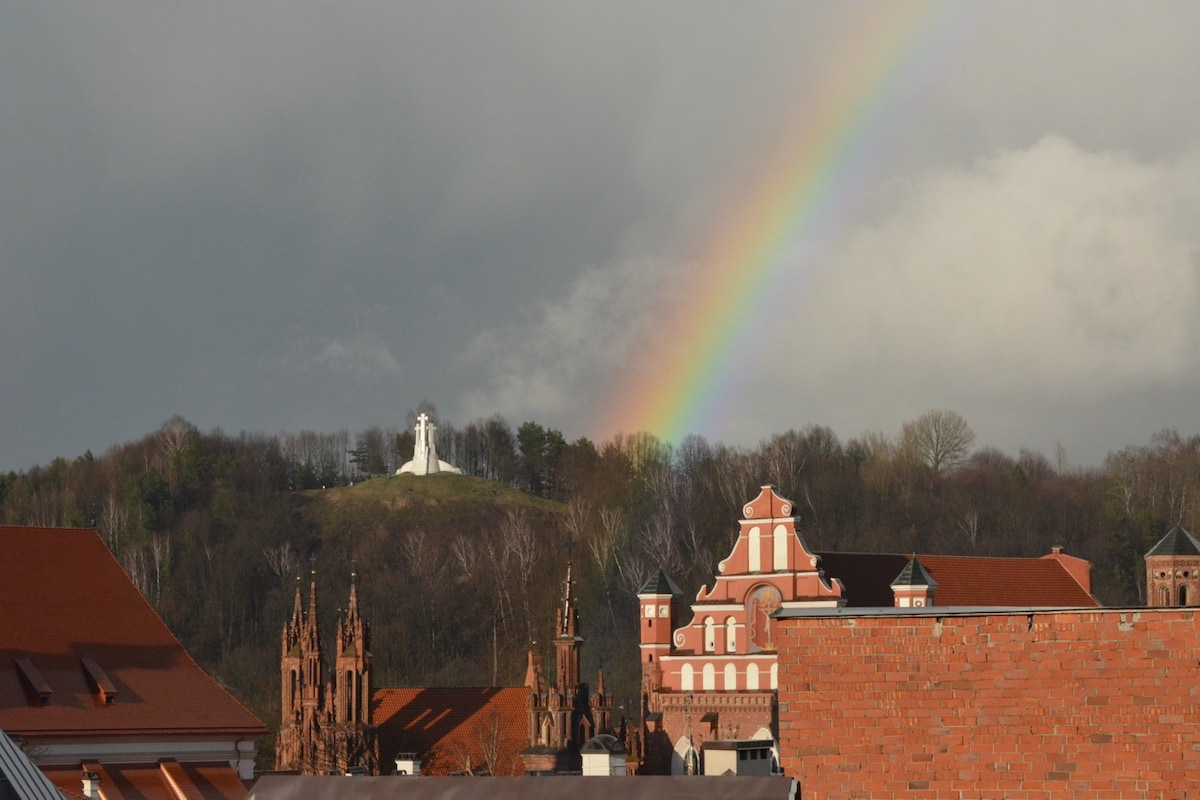 View from window of apartment (brick spires of historic late-Gothic St. Anne's Church visible)