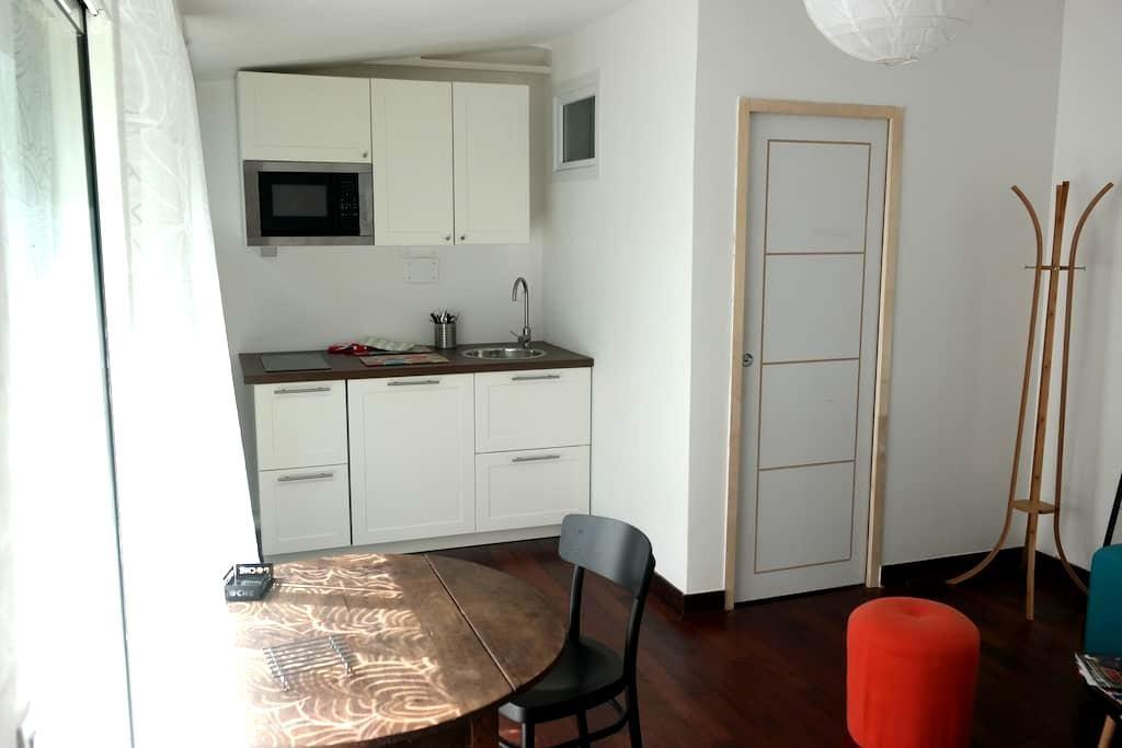 Grand studio centre sur jardin - Nantes - Wohnung