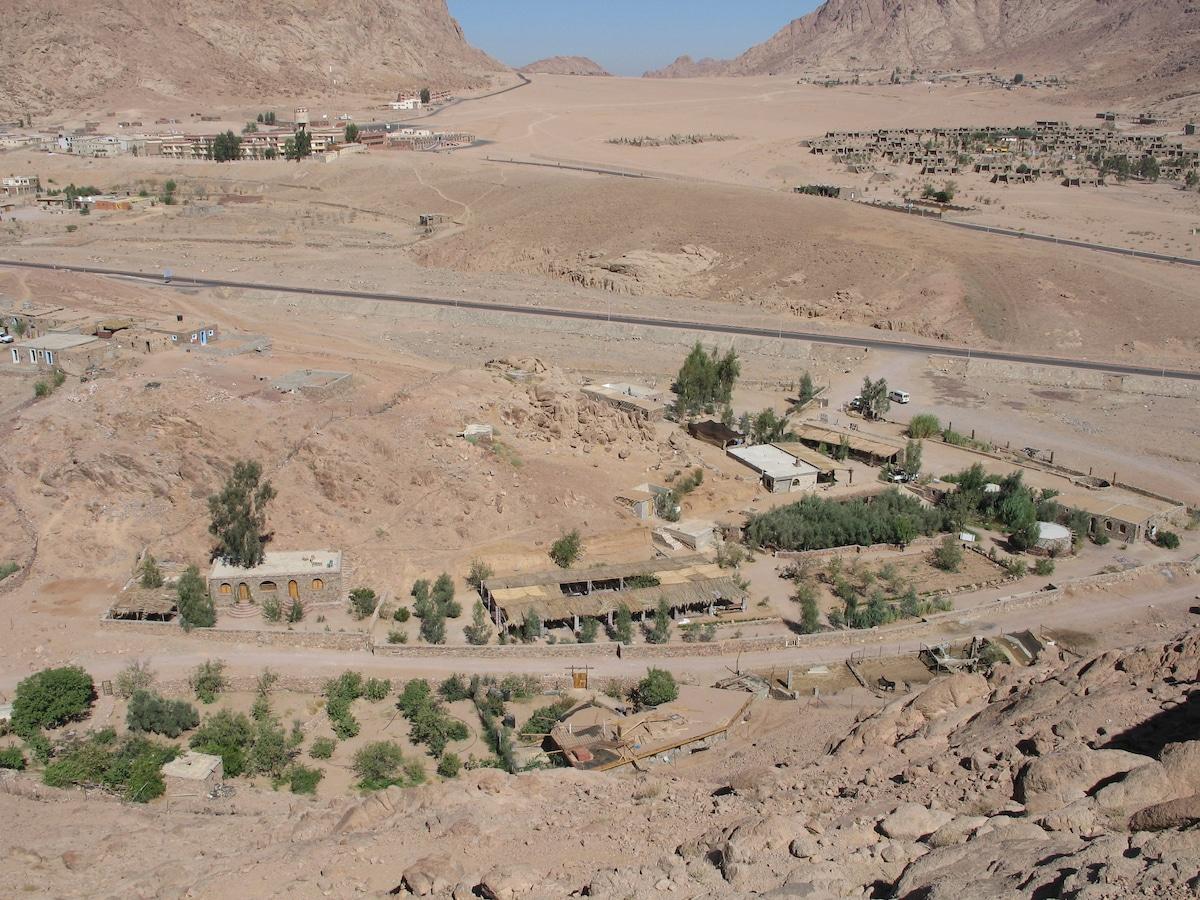 Fox Camp & Desert Safari (폭스캠프)