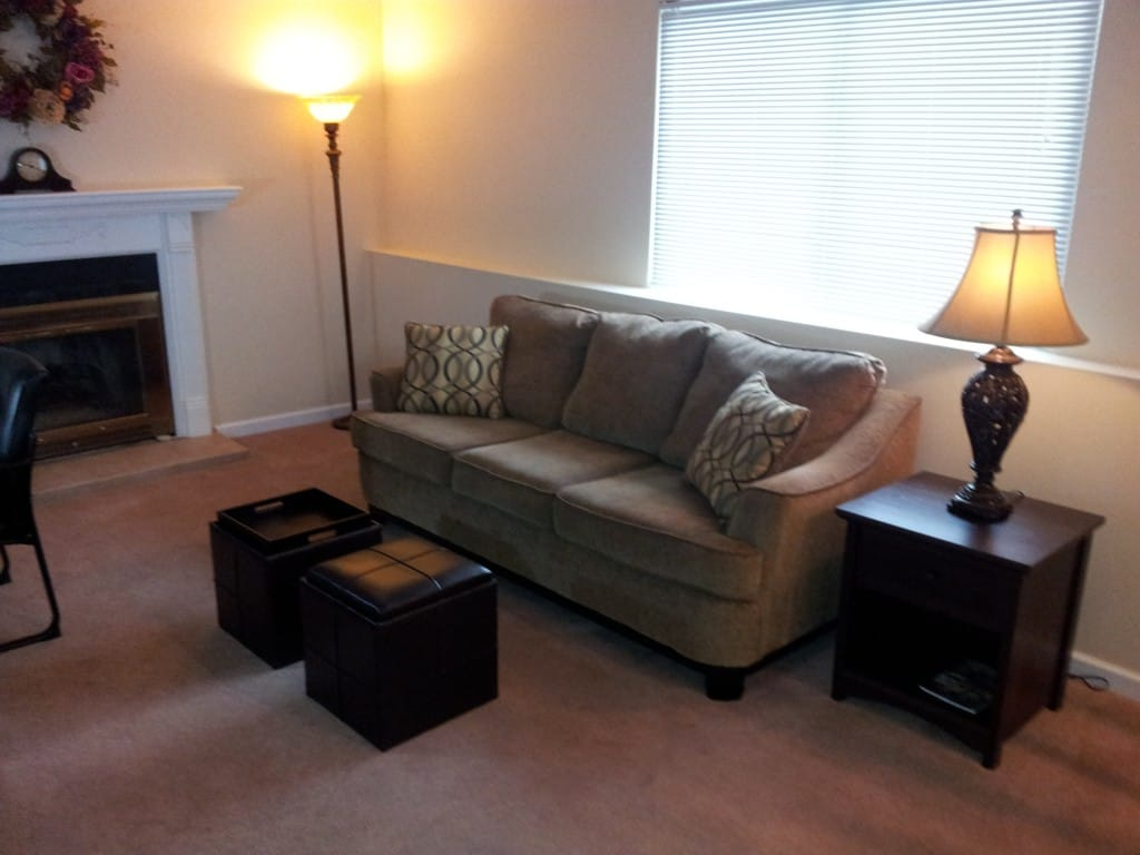 Lower living room with gas fireplace