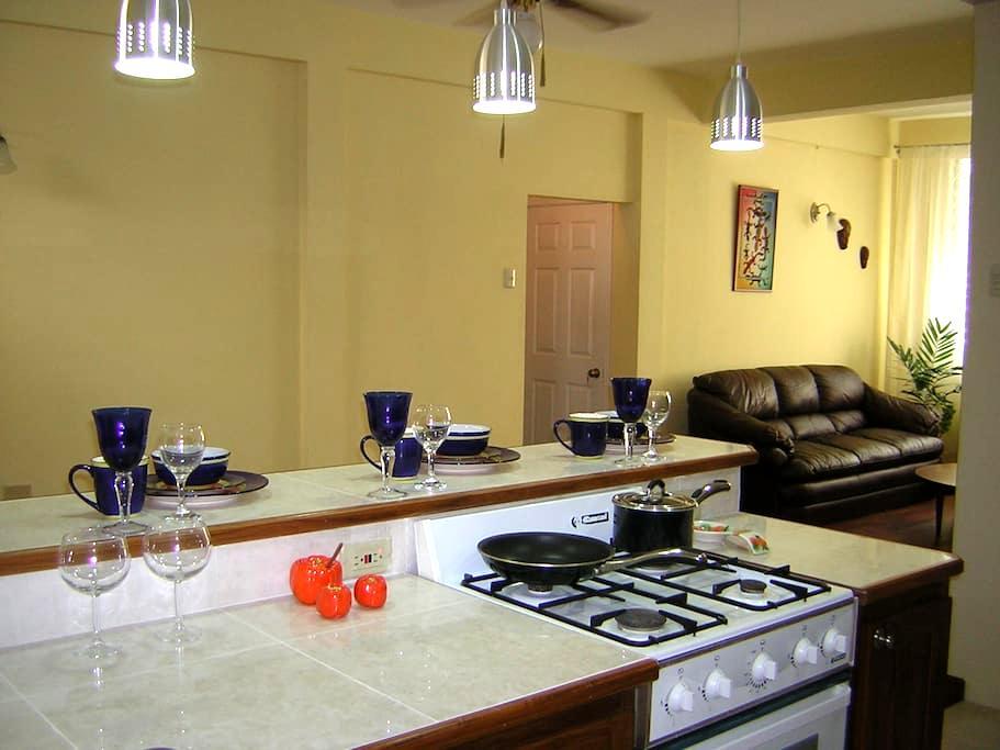 Spacious, Safe, convenient, Entire D/Martin apt - Petit Valley - Apartamento