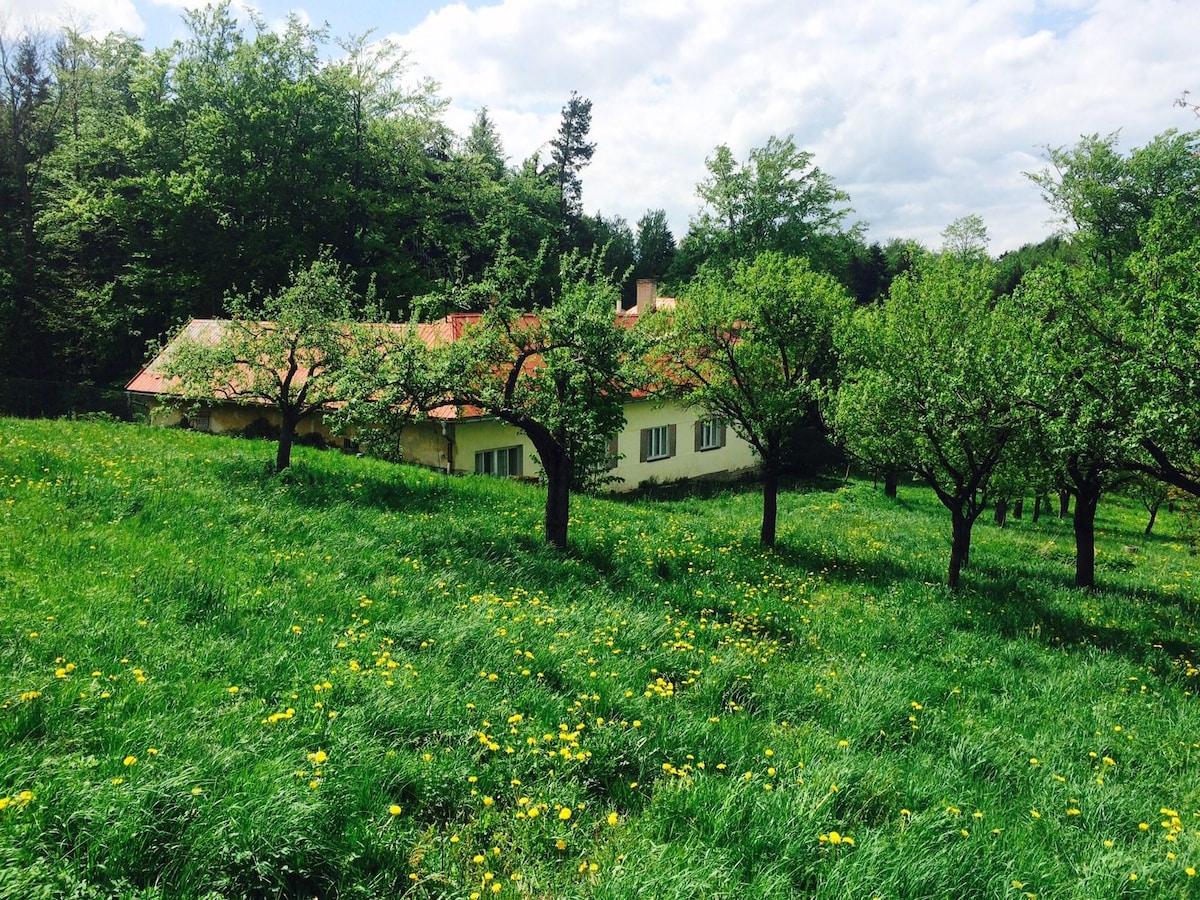 Chalupa V zahradách - byt č. 1