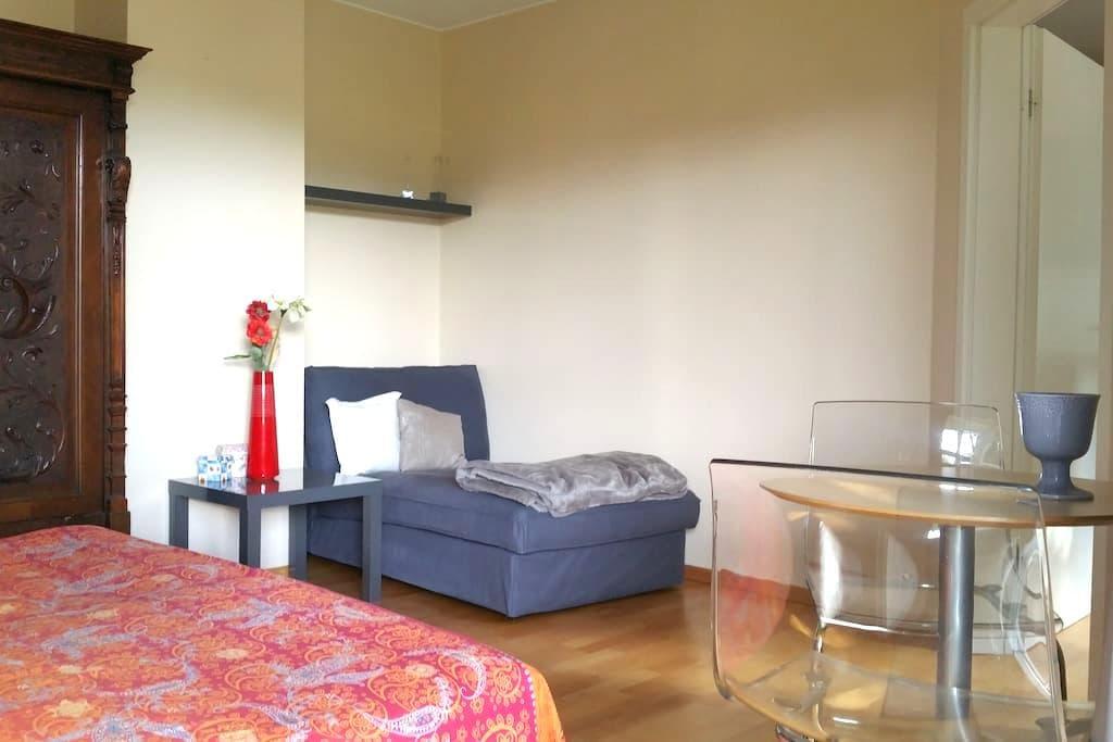 Helle Einliegerwohnung in ruhigem Einfamilienhaus - Trier - Flat