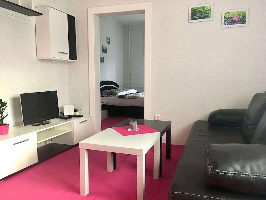 Apartman BEY - Děhylov - Hus