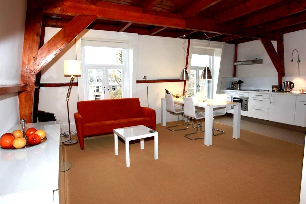Top floor loft with kitchen - La Haya