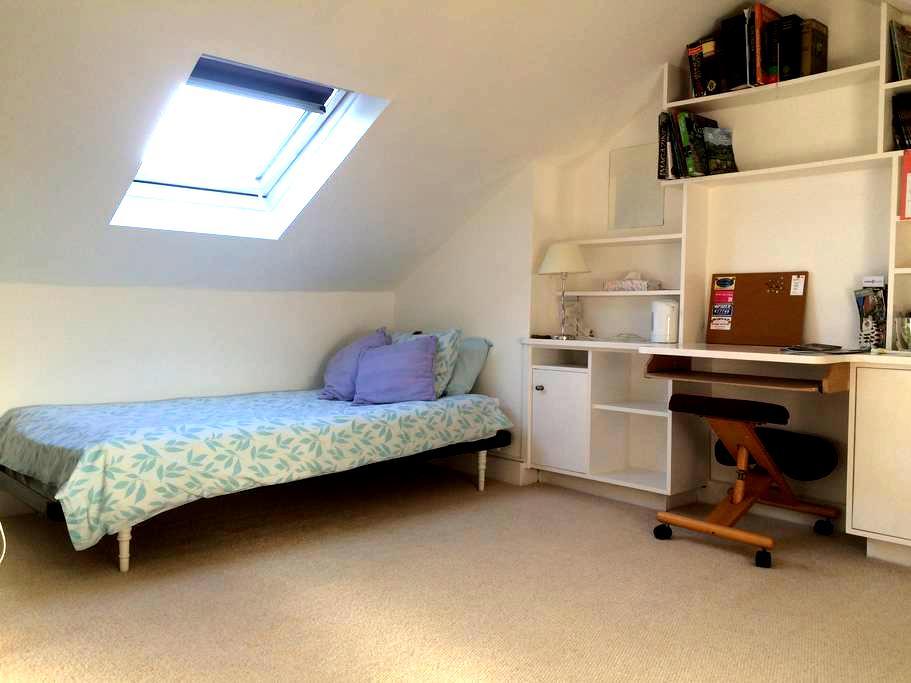Attic room in central Winchester - Winchester
