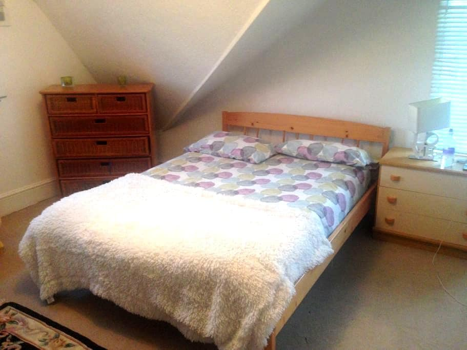 Spacious attic in Cardiff Bay nr Stadium sleeps 3 - Cardiff - Ház