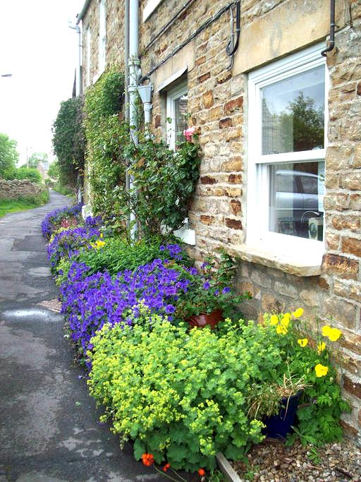 Twin room in Cotherstone Cottage, Teesdale - Cotherstone