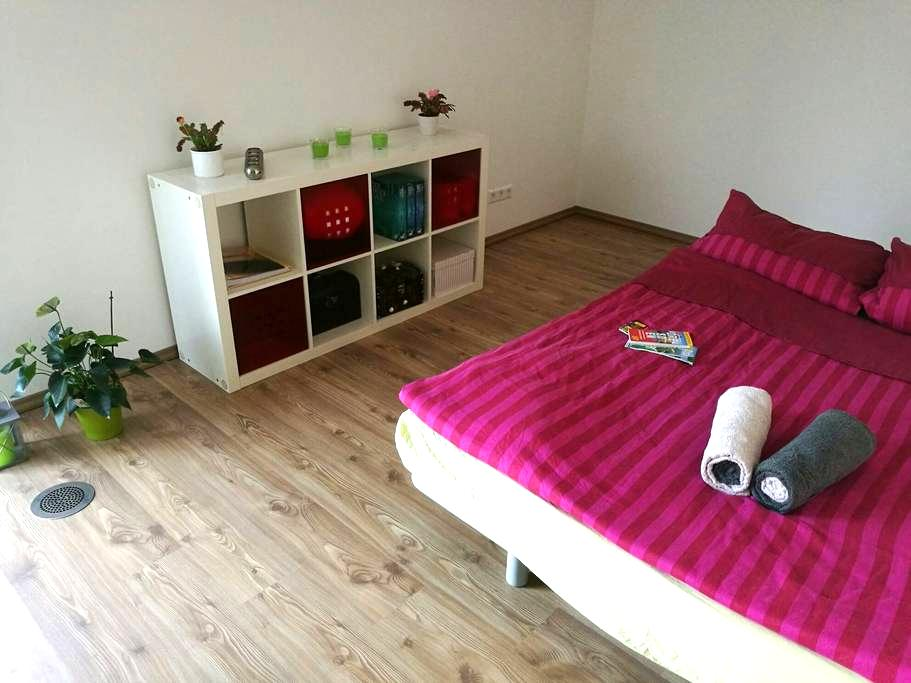 Room with a prime location, 40 sqm terrace - Dresden - House