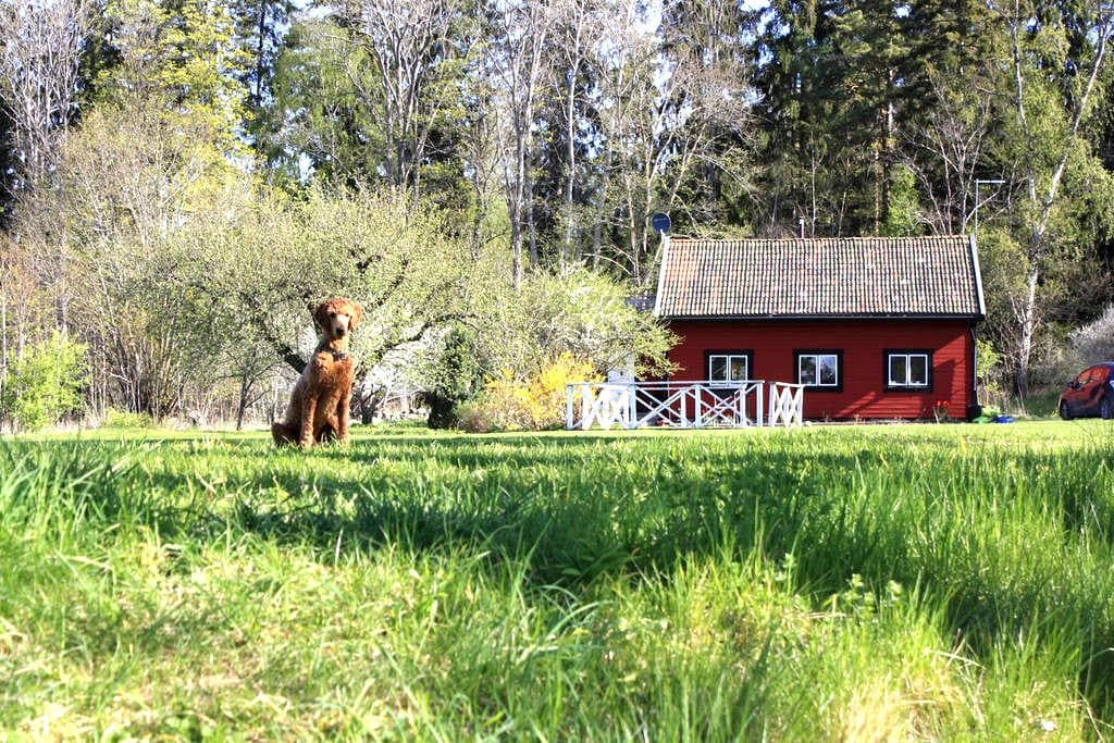Stay in paradise between city and airport - Upplands Väsby - 家庭式旅館