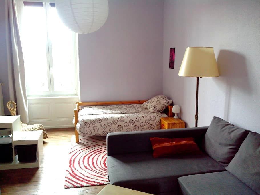 Appart vaste et sympathique au coeur de Belfort - Belfort - Apartment