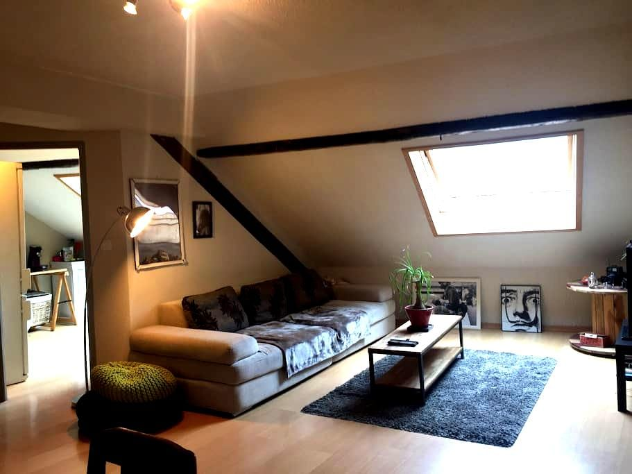 Sous les toits, charmant cocon ! - Albertville - Apartment