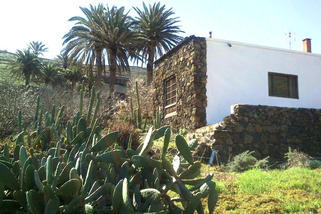Habitación en Casa ENTREPALMERAS - Haría - Bed & Breakfast