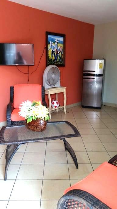 Whole apartment awaits you ... - Managua - Appartement