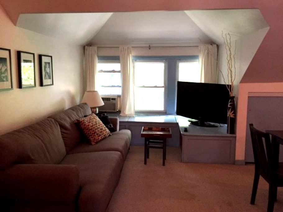Cozy and private in historic, diverse Oak Park - Oak Park - Appartement