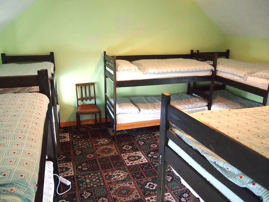 €13/pp  10 Bed Mixed Dorm ( Ensuite ) - Cashel - Общежитие