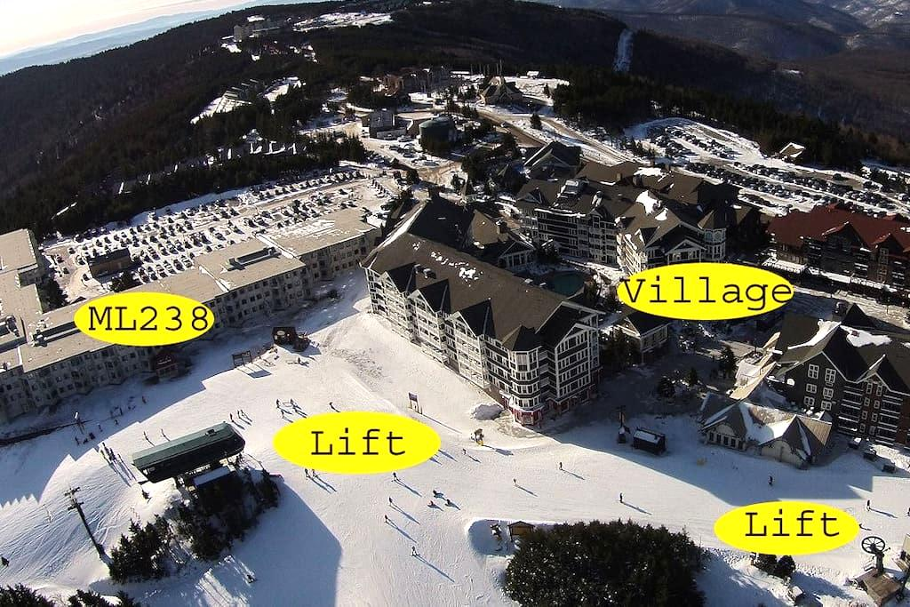Ski/Bike In-Out 1BR 1BA Free Wi-Fi & Parking ML238 - Snowshoe - Apartment
