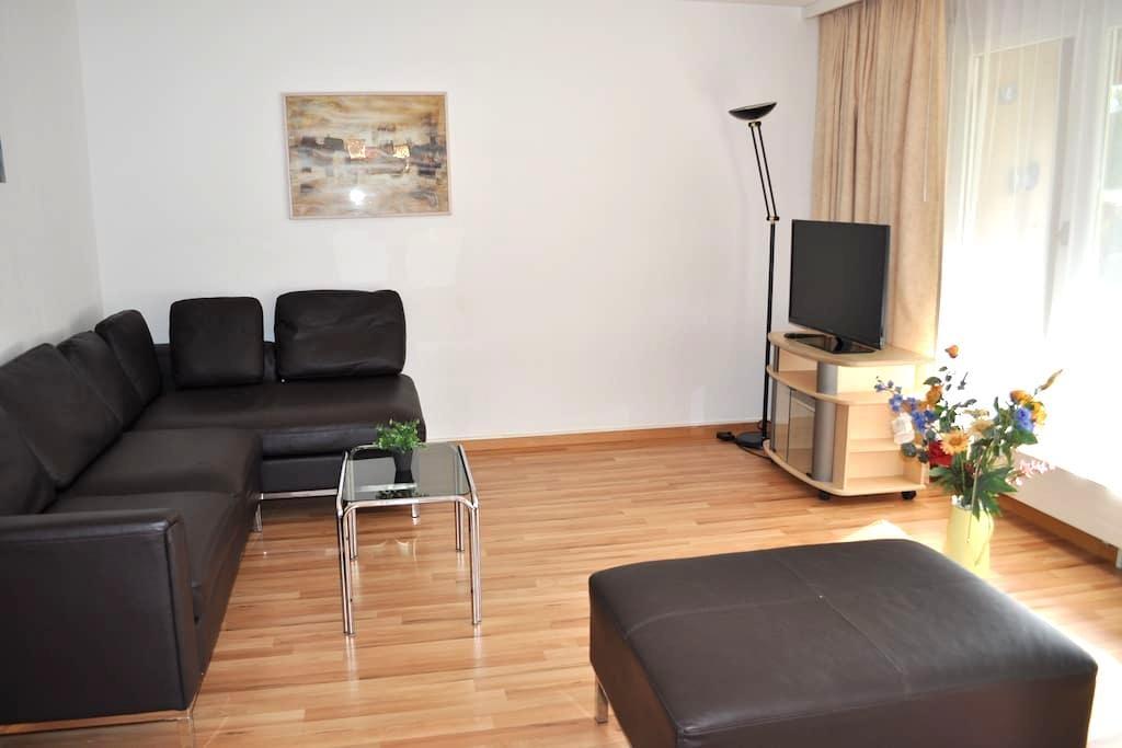 Schöne 3 1/2-Zi Gartenwohnung,Brugg - Brugg - Wohnung