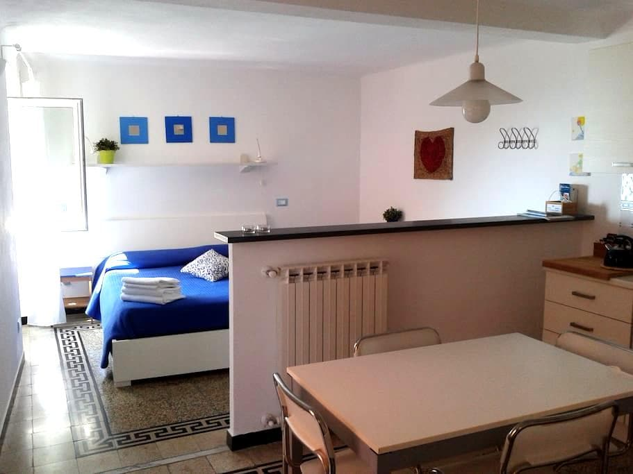 BOLLE BLU: delightful, romantic apartment! - Manarola - Appartamento