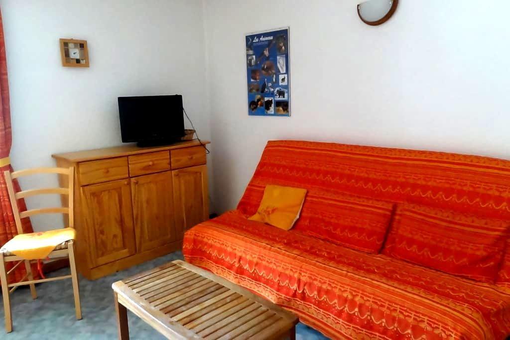 appartement de 50m2 à ABRIÈS - Abries - Appartement en résidence