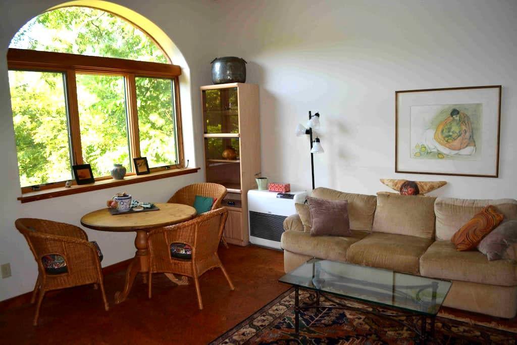 Cozy quiet Celo home, creek and mountain views - Burnsville - House