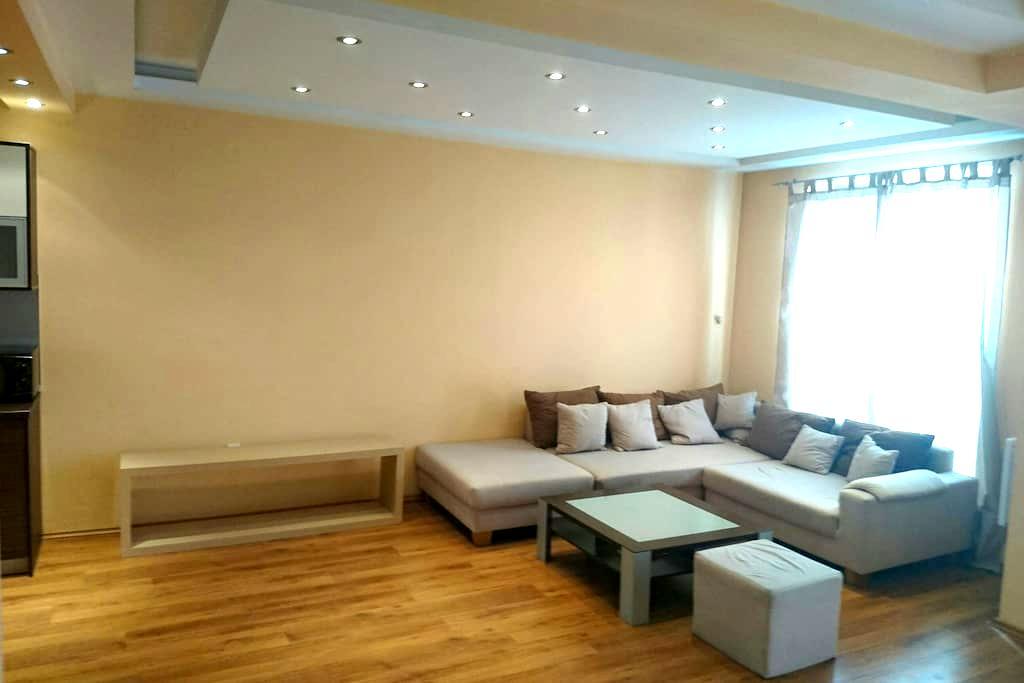 Stylish and cozy studio near the heart of Sofia - Sofia - Apartamento
