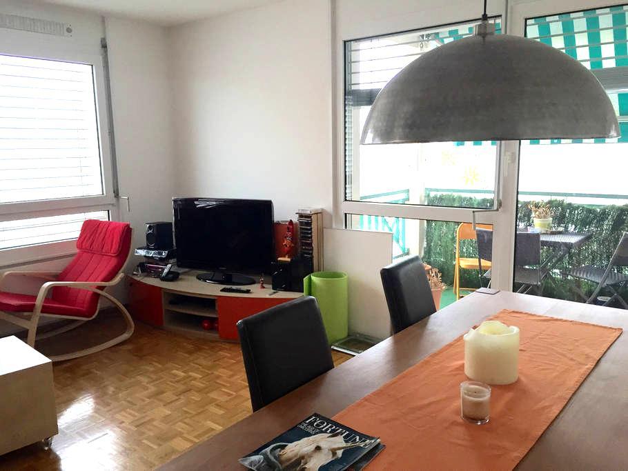 Beautiful Last Floor Room with View - Lancy - Apartment