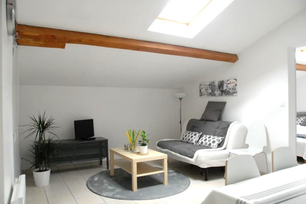 T2 calme moderne quartier Saint Martin du Touch - Toulouse - Apartment
