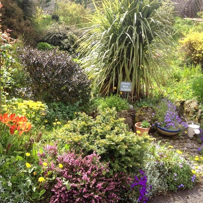 Quiet & Peaceful Ivynook Cottage - Birr - Hus