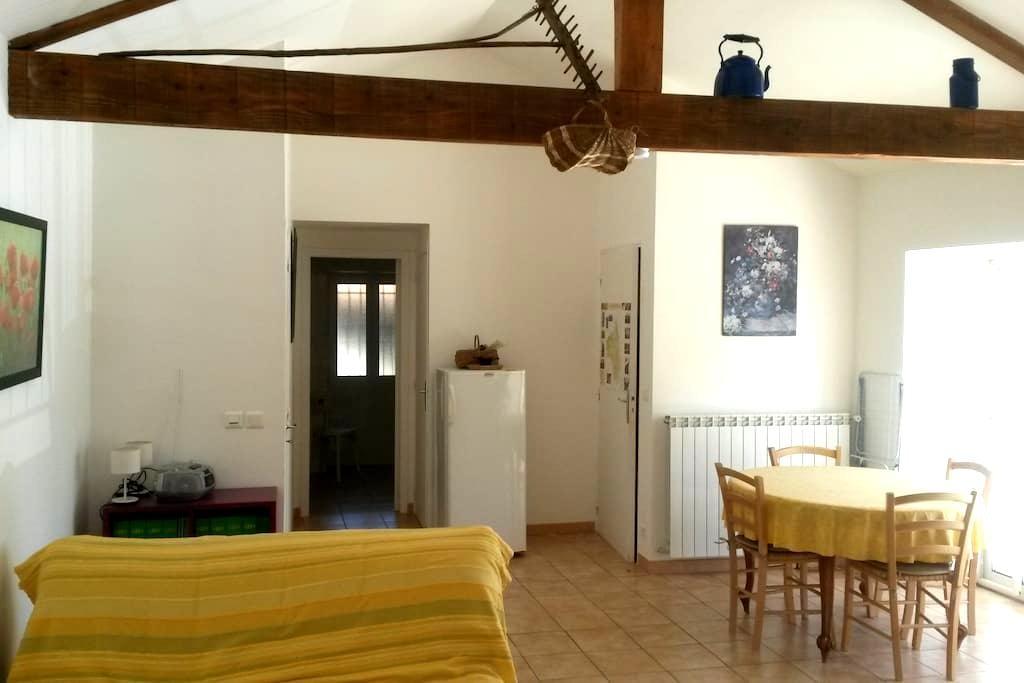 Oasis de calme et de verdure  en sud aveyron - Brasc - Appartement