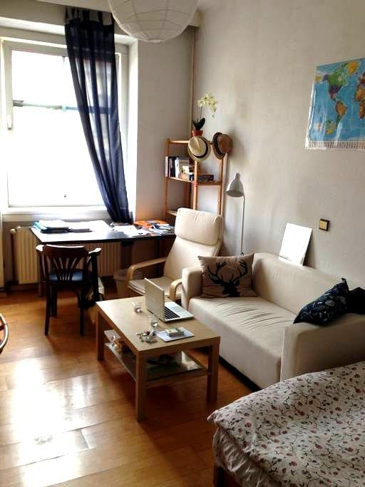 Nice central room in cozy flat - Vienna - Leilighet