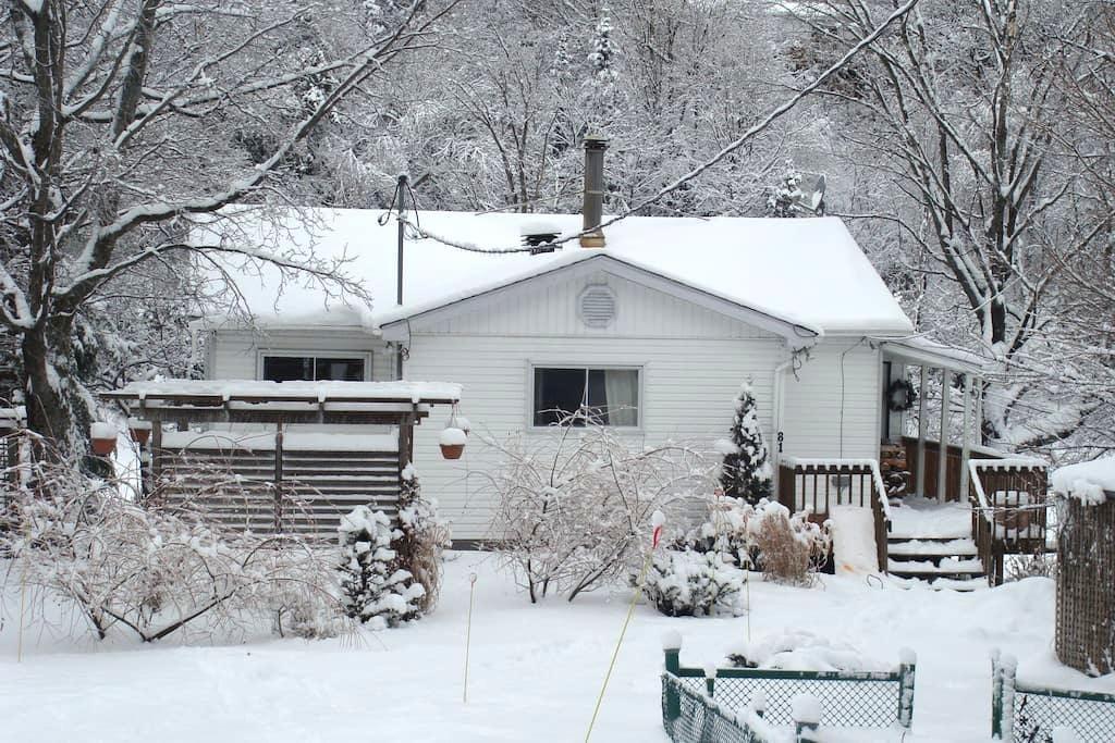 Petite maison au bord du lac... - Brownsburg