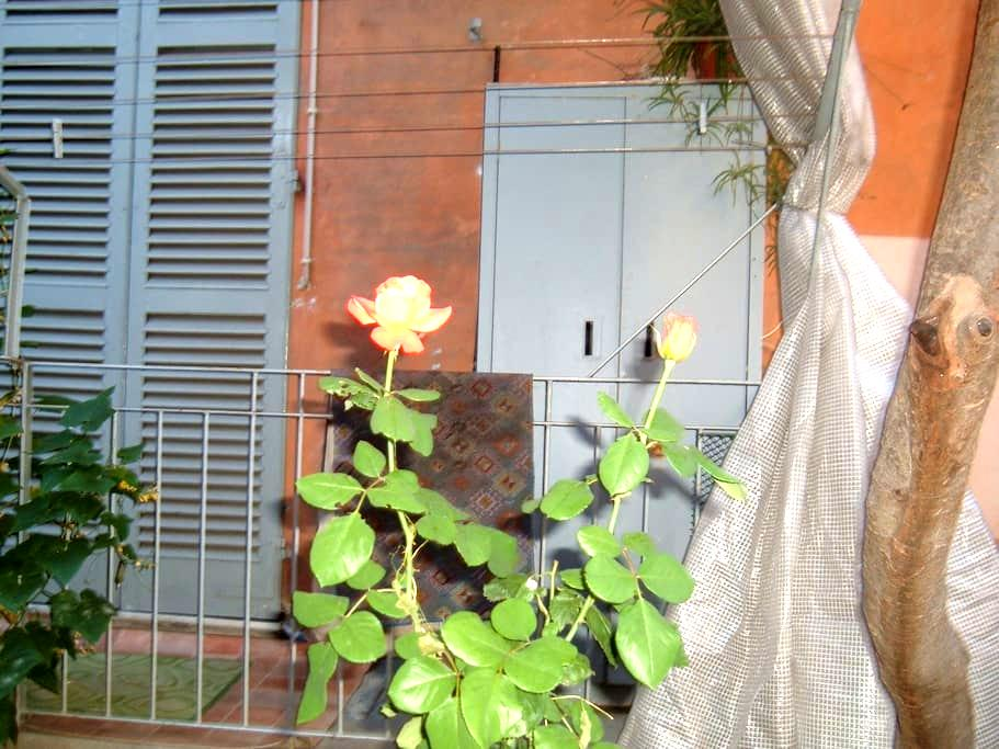 Iris blu - Alessandria - Apartamento