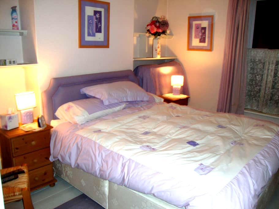 Bright, sunny, kingsize room - Salisbury - House