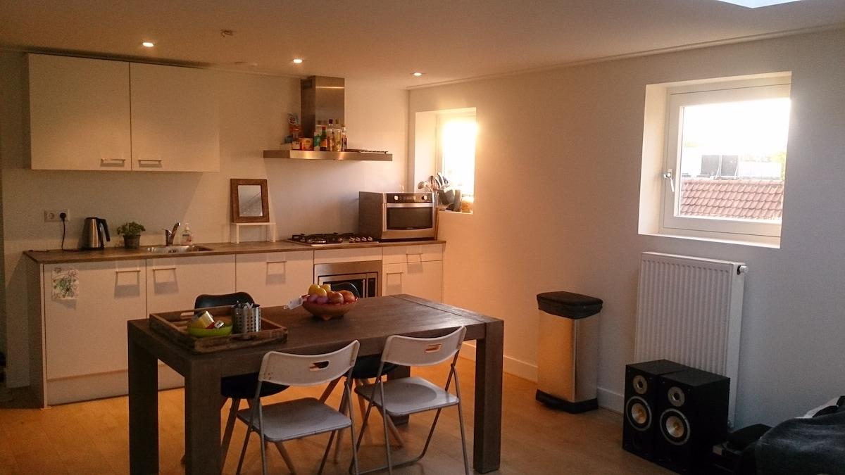 Apartment 3 minutes from Vondelpark
