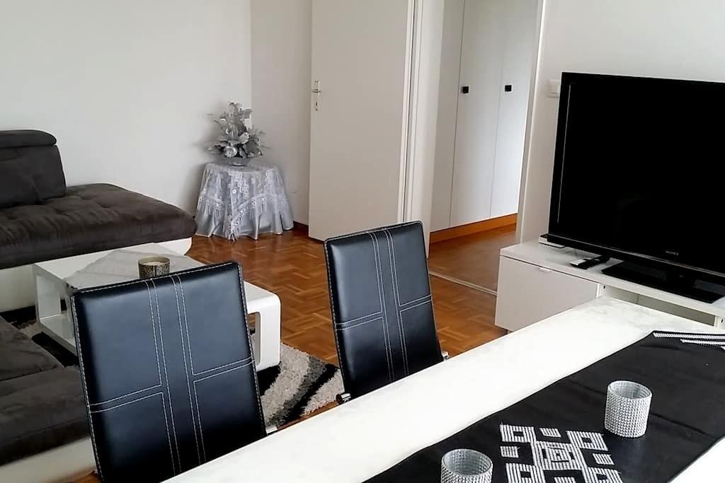 Trés Bel Appart, spacieux, près U.N - Genève - Apartment