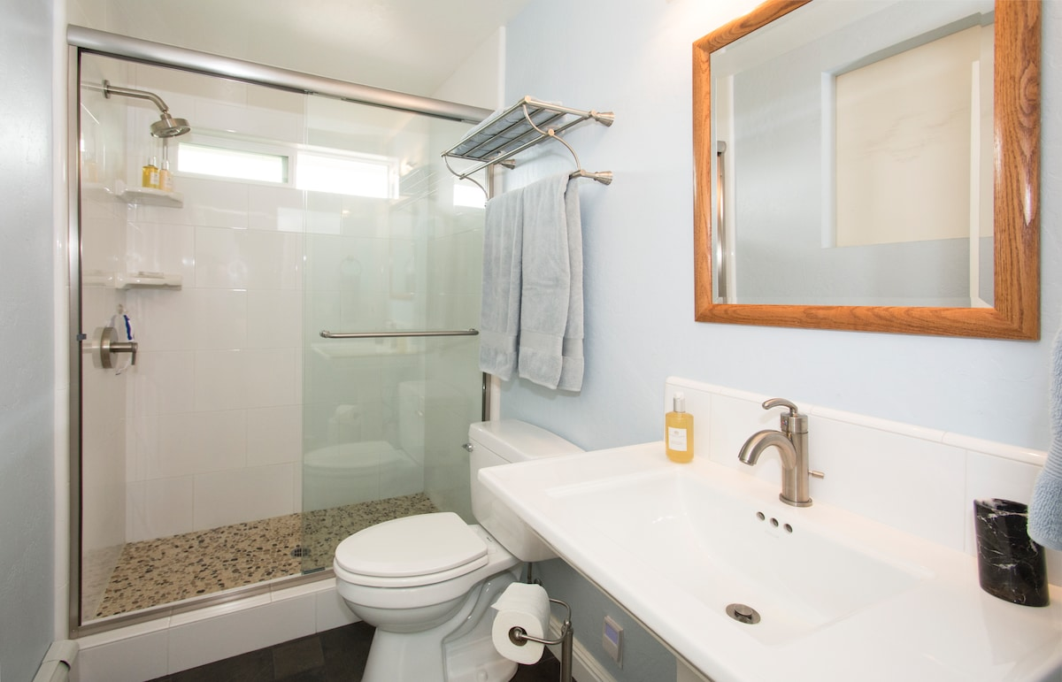 Guest Bathroom with pebbled shower