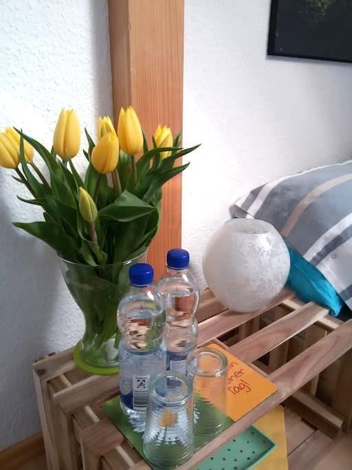saubere, helle Zimmer mit Frühstück - Wettenberg - Bed & Breakfast
