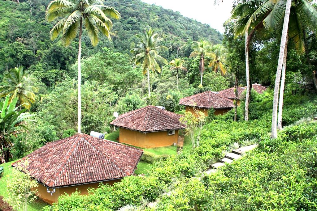 Athulya Villas - Kandy - Villa