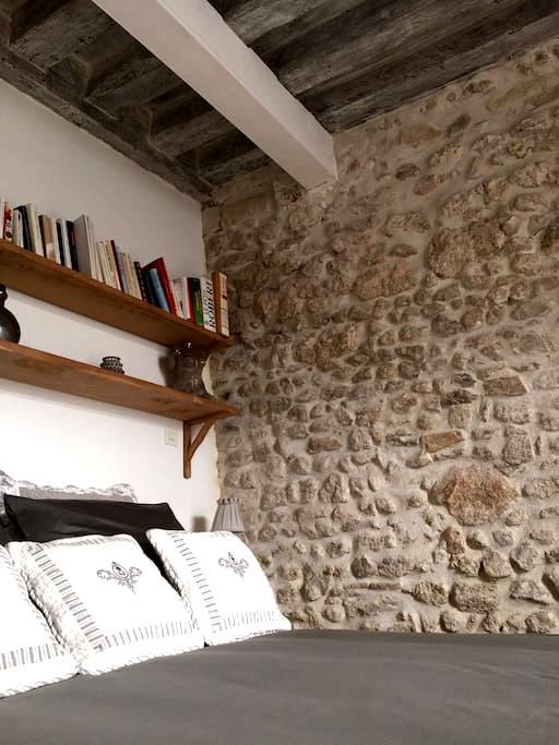 Petite suite privative à Orléans - Orléans - House