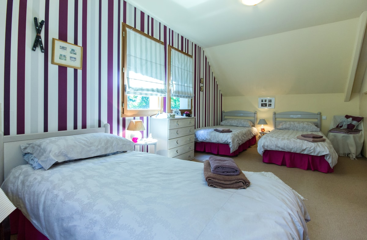 spacious room with 3 single beds