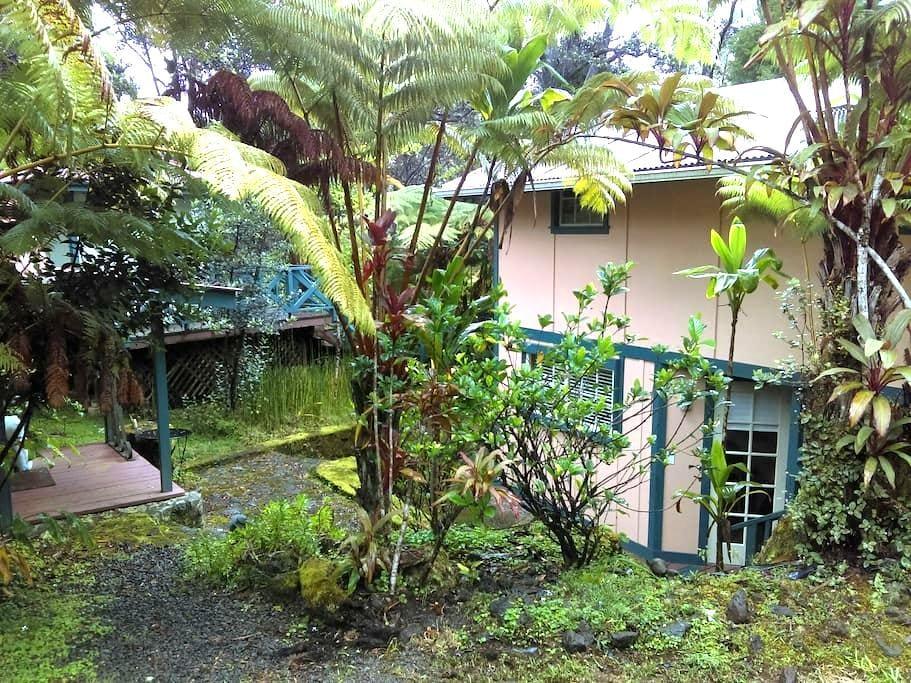 Quiet Hawaiian Forest Cabin - volcano  - Kabin