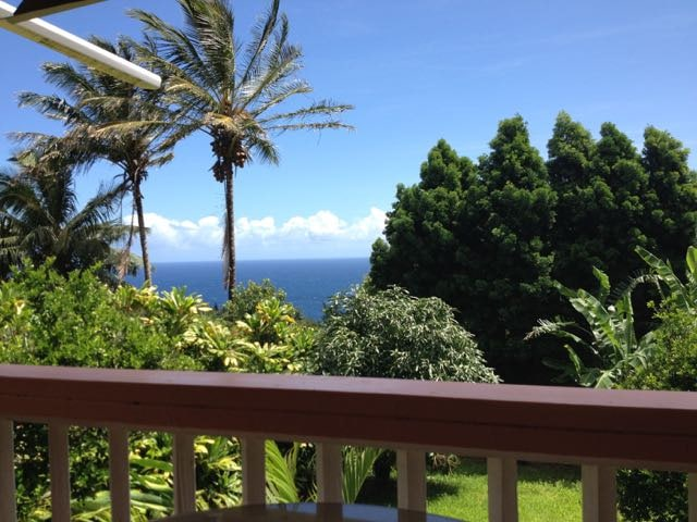 View from the shared lanai.